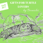 turtle gifts